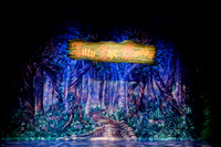 "Lyric Stage ""Into the Woods"""