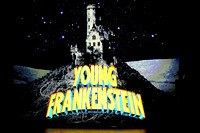 "MTD ""Young Frankenstein"""